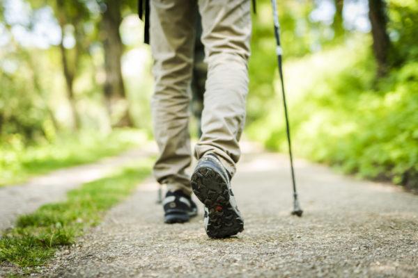 Explore our walking trails